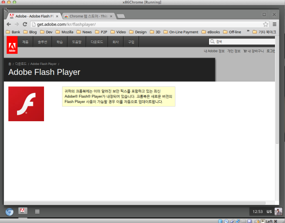 Adobe Flash page says it's already installed.